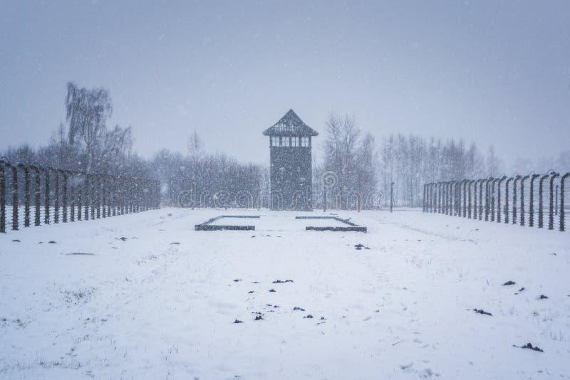 inverno em Auschwitz, Polônia fotos de stock