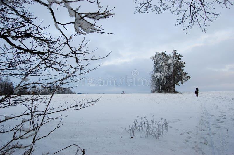 Inverno em Jivova fotografia de stock royalty free