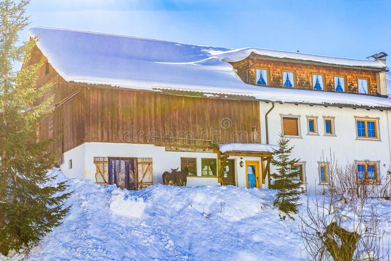 Inverno em montanhas com muita neve, céu azul brilhante fotografia de stock