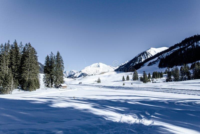 Inverno em montanhas com muita neve, céu azul brilhante foto de stock royalty free