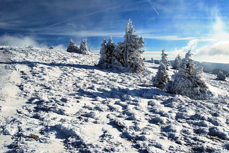 inverno em montanhas de Fischbacher Alpen com neve, árvore e o céu azul foto de stock royalty free