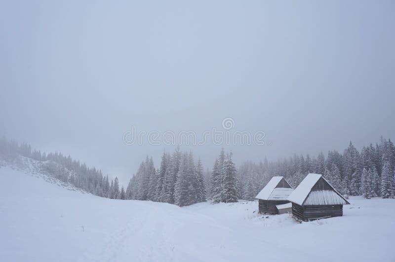 Inverno em montanhas de Tatra imagens de stock