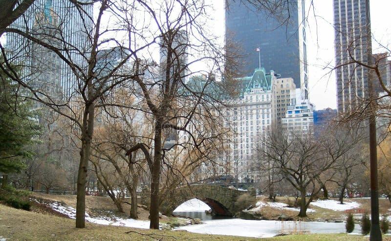 Inverno em NYC 2 imagens de stock