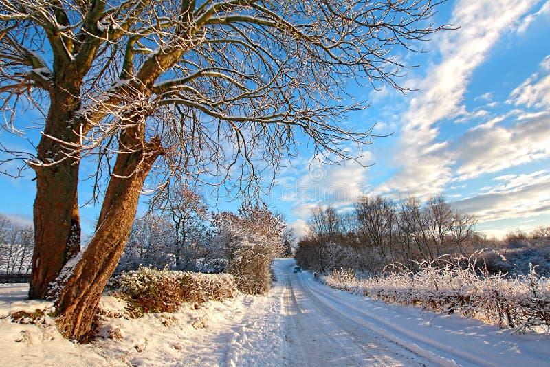 Inverno em Scotland foto de stock