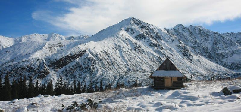 Inverno em Tatra foto de stock