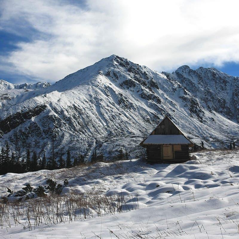 Inverno em Tatra foto de stock royalty free