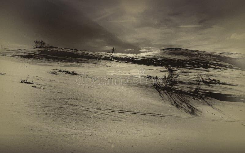 inverno em Telemark, Noruega fotografia de stock royalty free