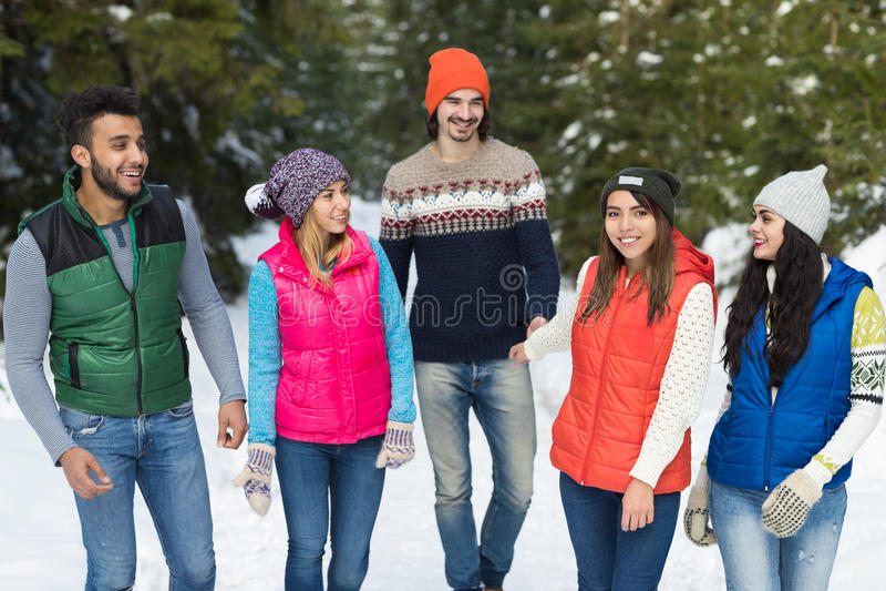 inverno exterior de passeio de Forest Happy Smiling Young Friends da neve do grupo dos povos foto de stock royalty free
