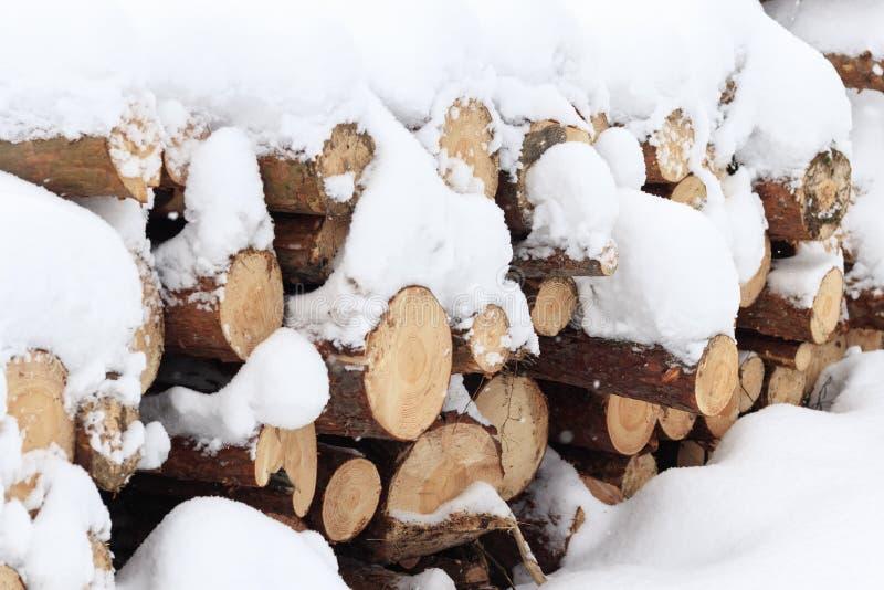 inverno, freddo, nevicante Foresta segata per elaborare Impilato in un mucchio la neve è versata immagine stock