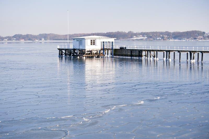 Download Inverno gelado foto de stock. Imagem de edifício, inverno - 12803426