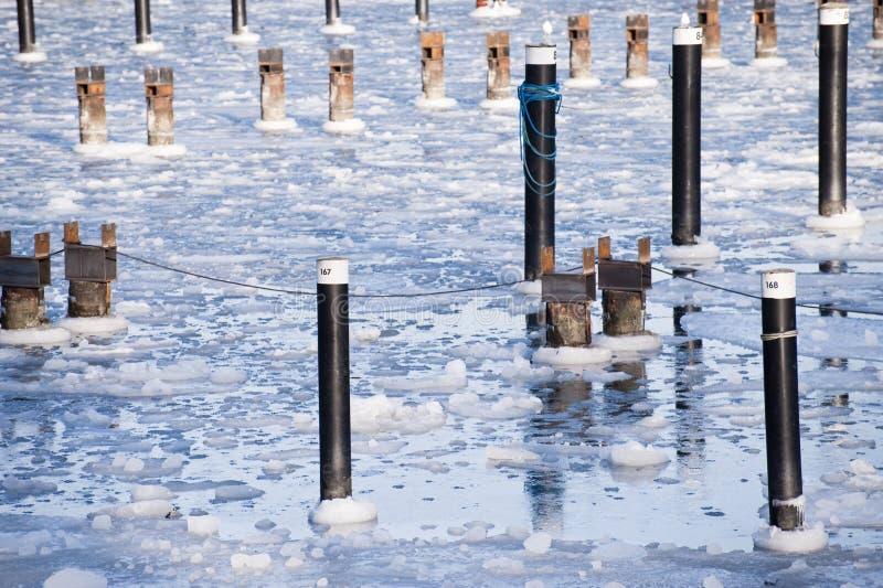 Download Inverno gelado imagem de stock. Imagem de frio, frosty - 12803537