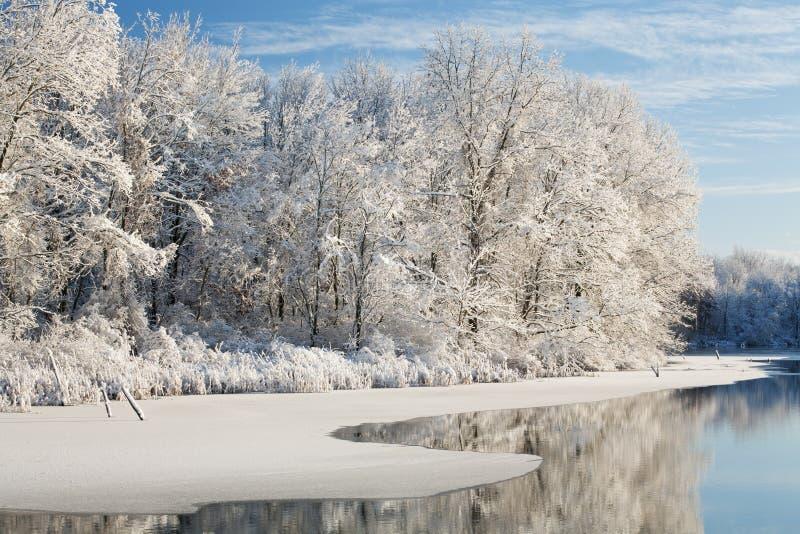Inverno, lago jackson Hole immagini stock libere da diritti