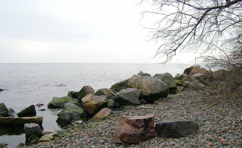 Inverno Mar Nero I rami dell'albero sopra le acque del Mar Nero La linea costiera della spiaggia sabbiosa un giorno nuvoloso immagini stock