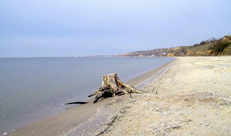 Inverno Mar Nero La linea costiera della spiaggia sabbiosa un giorno nuvoloso fotografia stock libera da diritti
