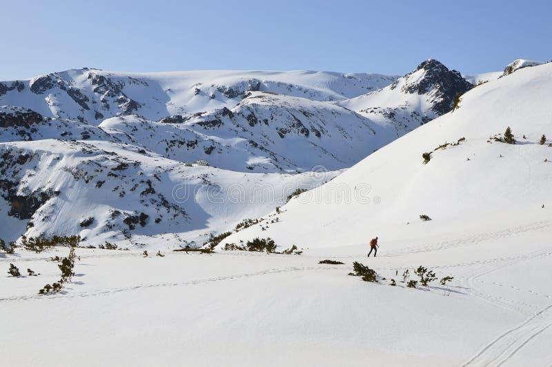Inverno in montagna di Rila, Bulgaria fotografie stock