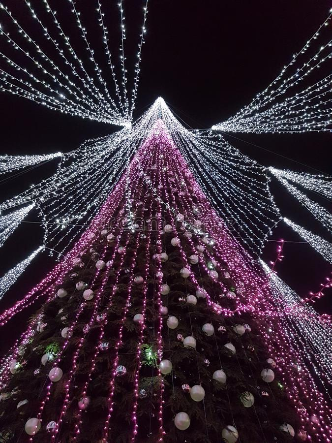 inverno na árvore de Natal de Vilnius Lituânia com um grupo das luzes foto de stock royalty free