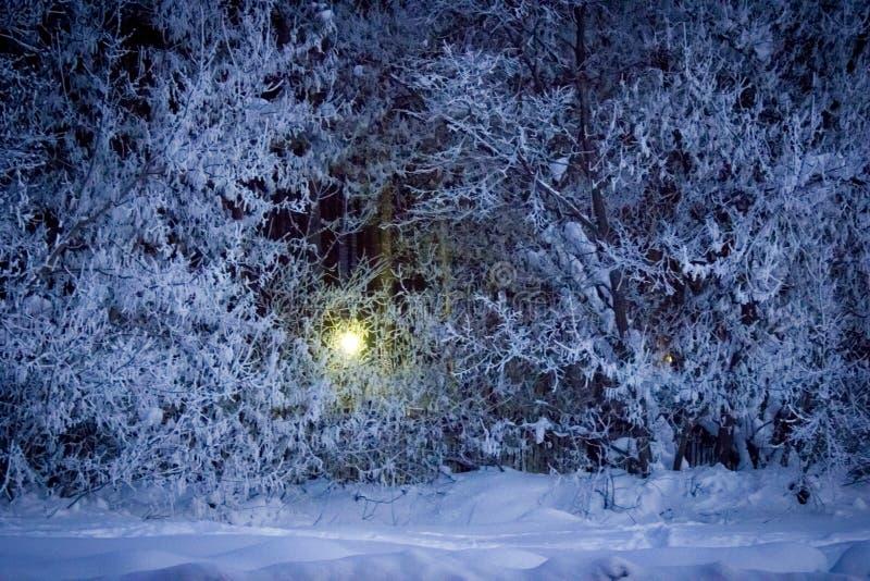 inverno na cidade de Ufa imagens de stock royalty free