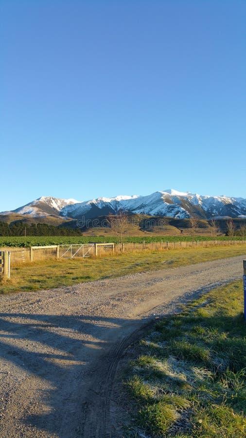 inverno na ilha sul Nova Zelândia imagens de stock