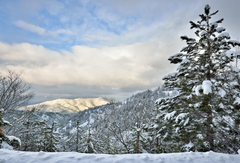 inverno na montanha imagens de stock