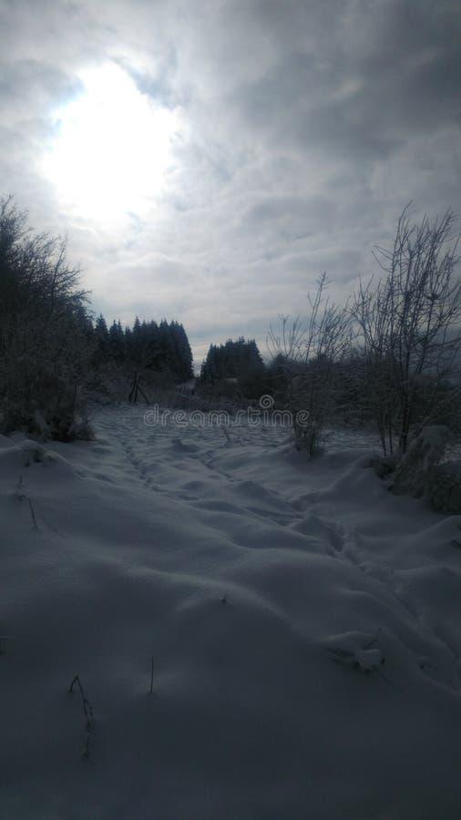 inverno na Sérvia fotografia de stock royalty free