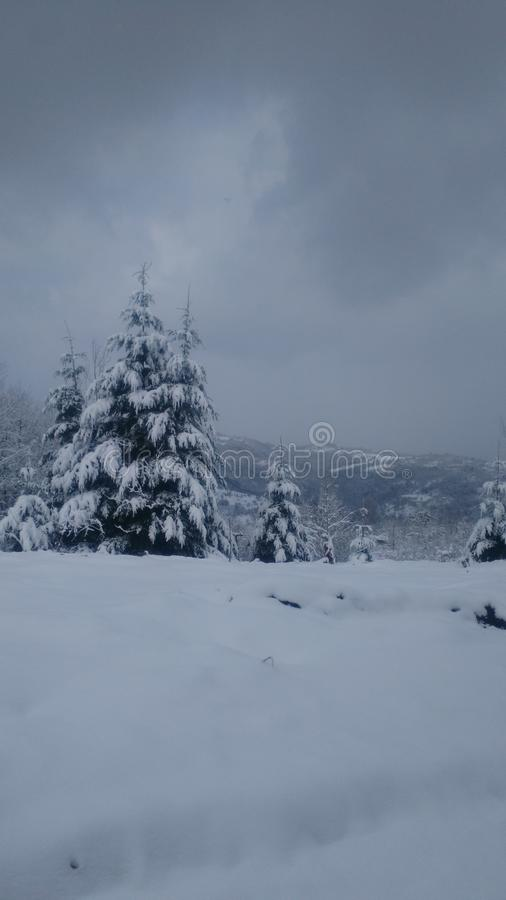 inverno na Sérvia foto de stock royalty free