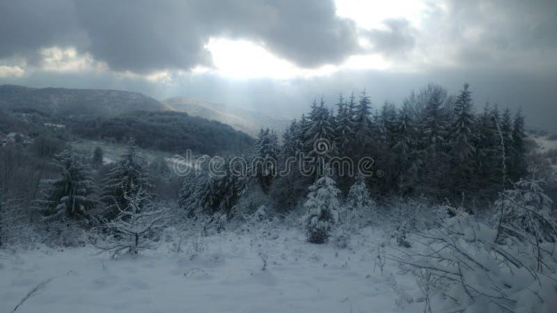 inverno na Sérvia fotos de stock royalty free
