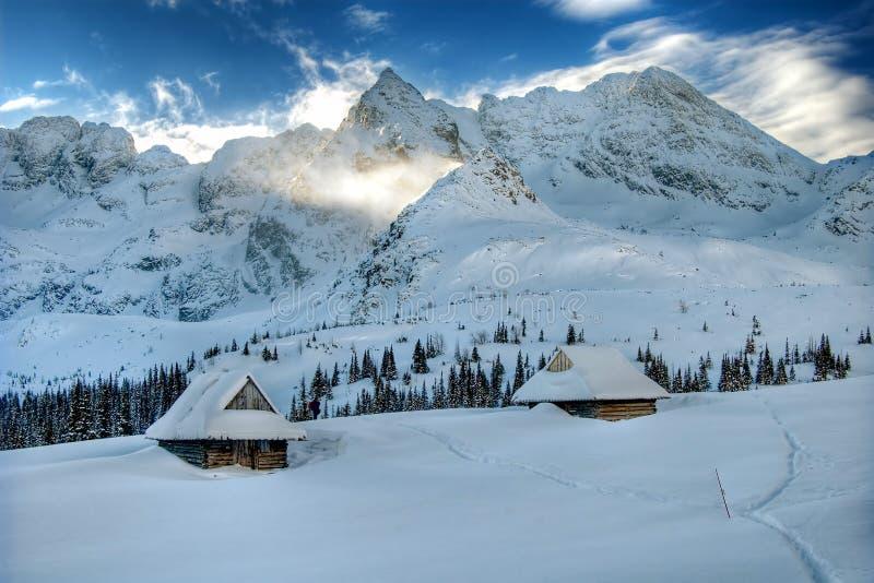 Inverno nas montanhas imagem de stock