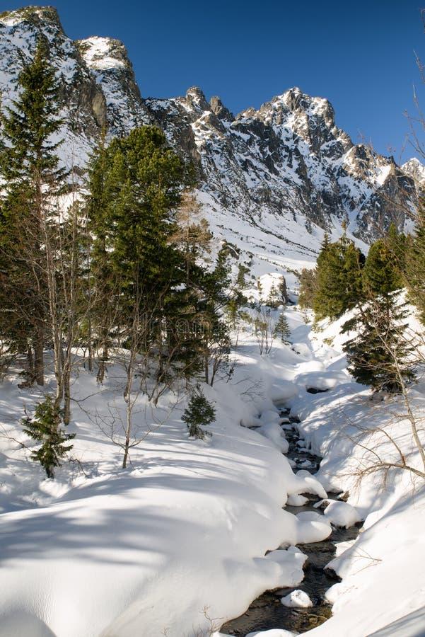 Inverno nas montanhas Tatras elevado, slovakia fotografia de stock royalty free