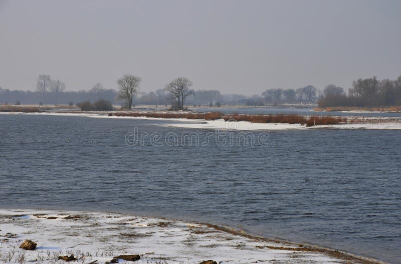 inverno nas zona sujeitas a inundações imagem de stock royalty free