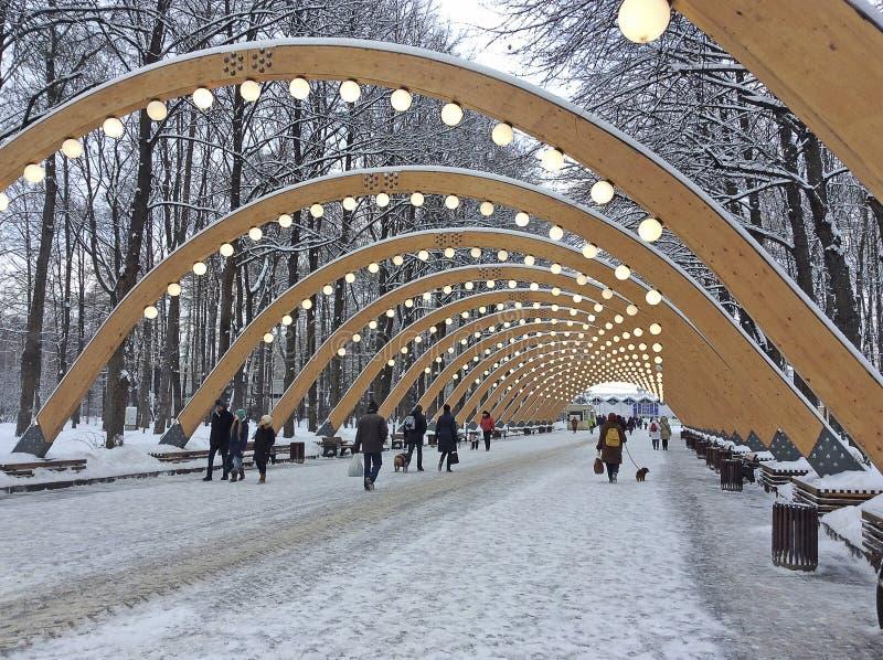 Inverno nel parco di Sokolniki, Mosca immagine stock