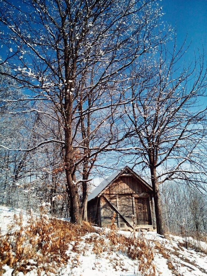 Inverno nel posto rurale fotografia stock libera da diritti