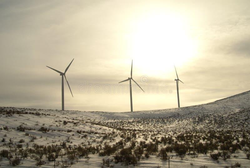 Inverno nevado de Oregon da turbina de vento fotografia de stock royalty free