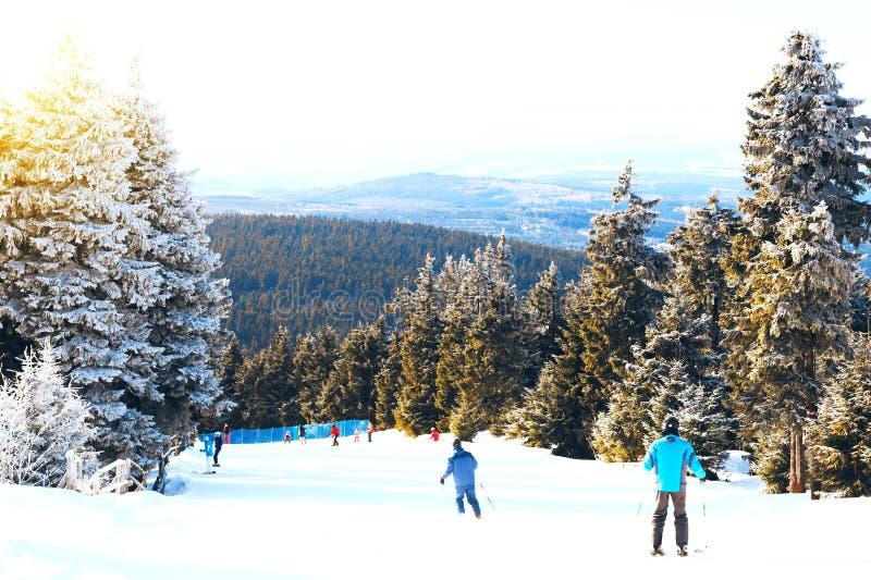 inverno, neve, floresta, paisagem, frio, árvore, montanha, natureza, esqui, árvores, esqui, céu, geada, nevado, branca, estação,  imagens de stock