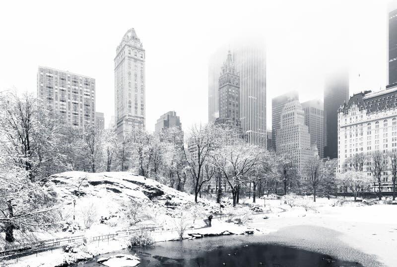 inverno no Central Park, NY imagens de stock royalty free