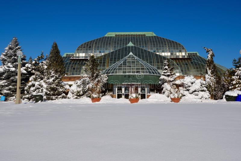 inverno no conservatório fotos de stock royalty free