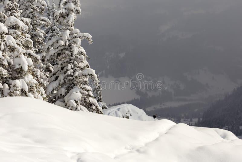 inverno no pico de Suhardul Mic com uma cabra preta no fundo imagens de stock