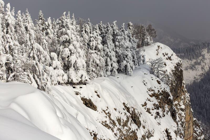 inverno no pico de Suhardul Mic na montanha de Romênia com algum preto fotografia de stock