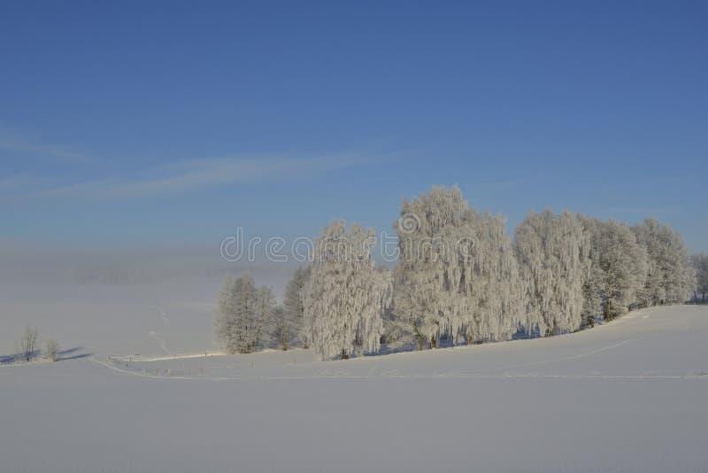inverno no saxão foto de stock royalty free