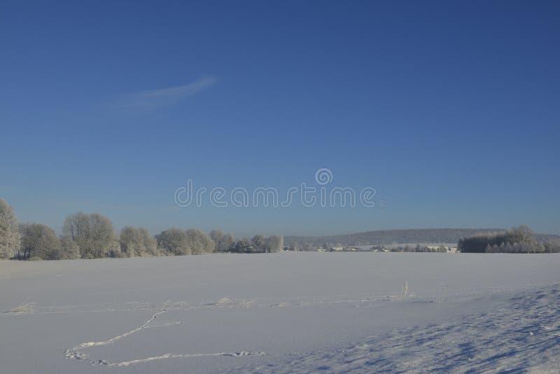 inverno no saxão imagem de stock