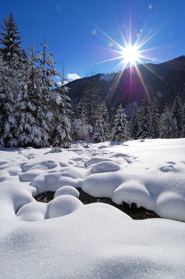 Inverno no vale alpino fotografia de stock