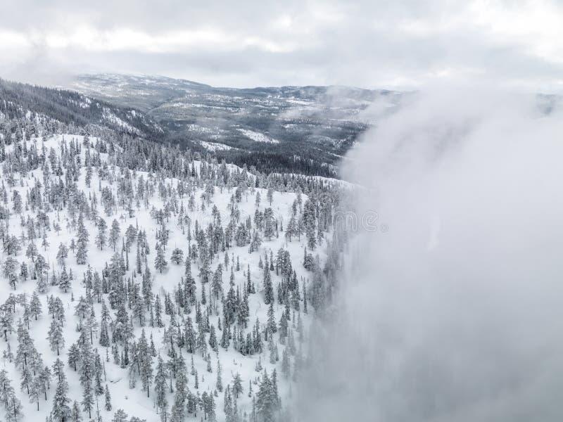 Inverno Norvegia fotografia stock