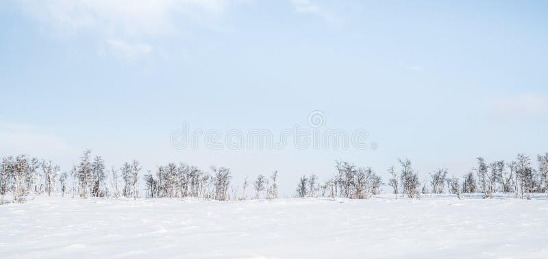 Inverno in Norvegia immagine stock libera da diritti