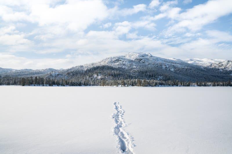 Inverno in Norvegia fotografia stock