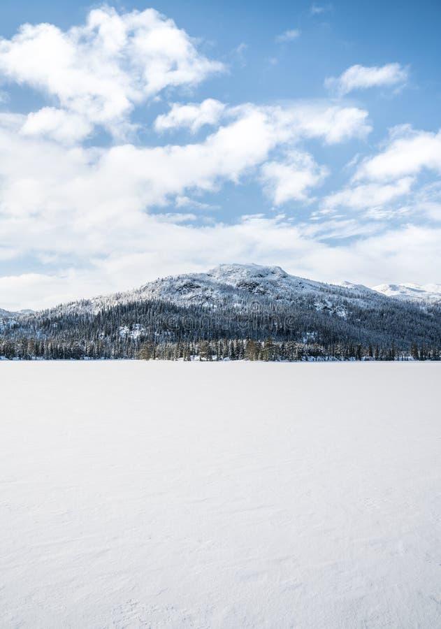 Inverno in Norvegia fotografia stock libera da diritti