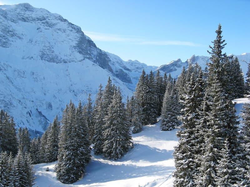 Inverno nos alpes imagens de stock