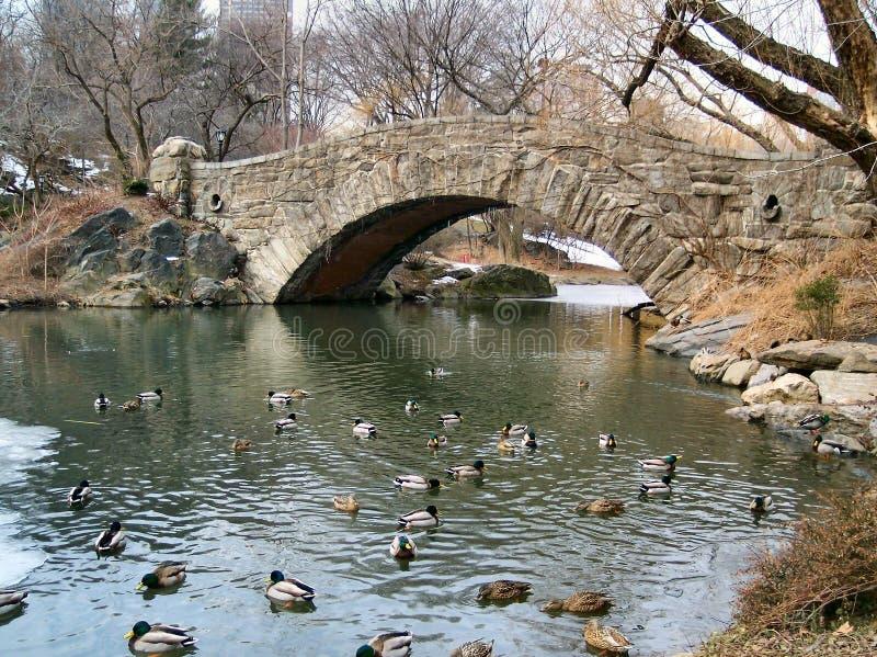 Inverno in NYC 1 fotografia stock libera da diritti