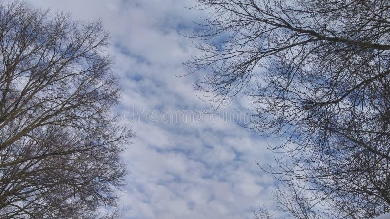 Inverno Ohio fotografie stock libere da diritti