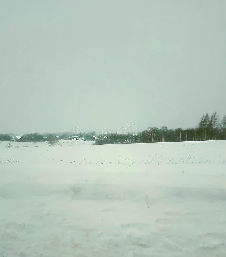 Inverno, paesaggio, neve, albero, foresta, cielo, natura, orizzonte, giorno, ghiaccio, freddo, gelo fotografia stock libera da diritti