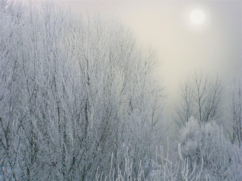 inverno repentino em Transnistria imagens de stock