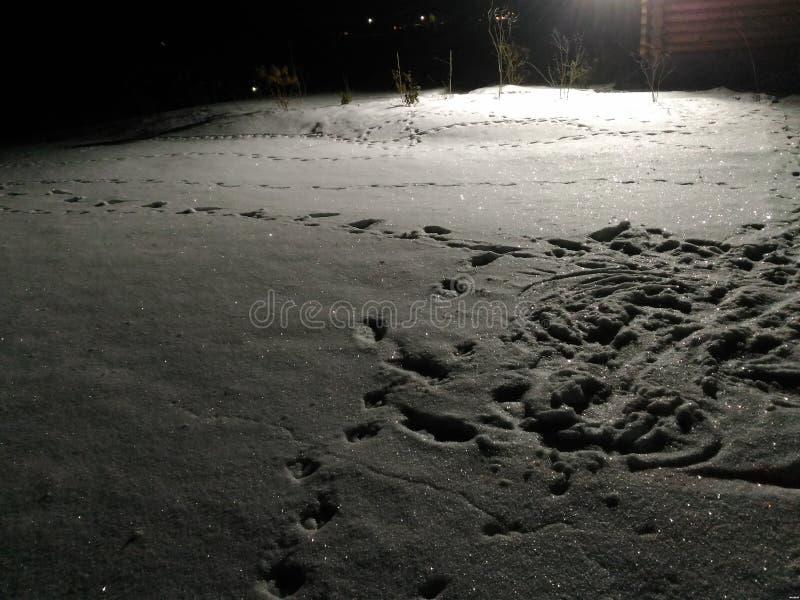 Inverno in Russia fotografie stock